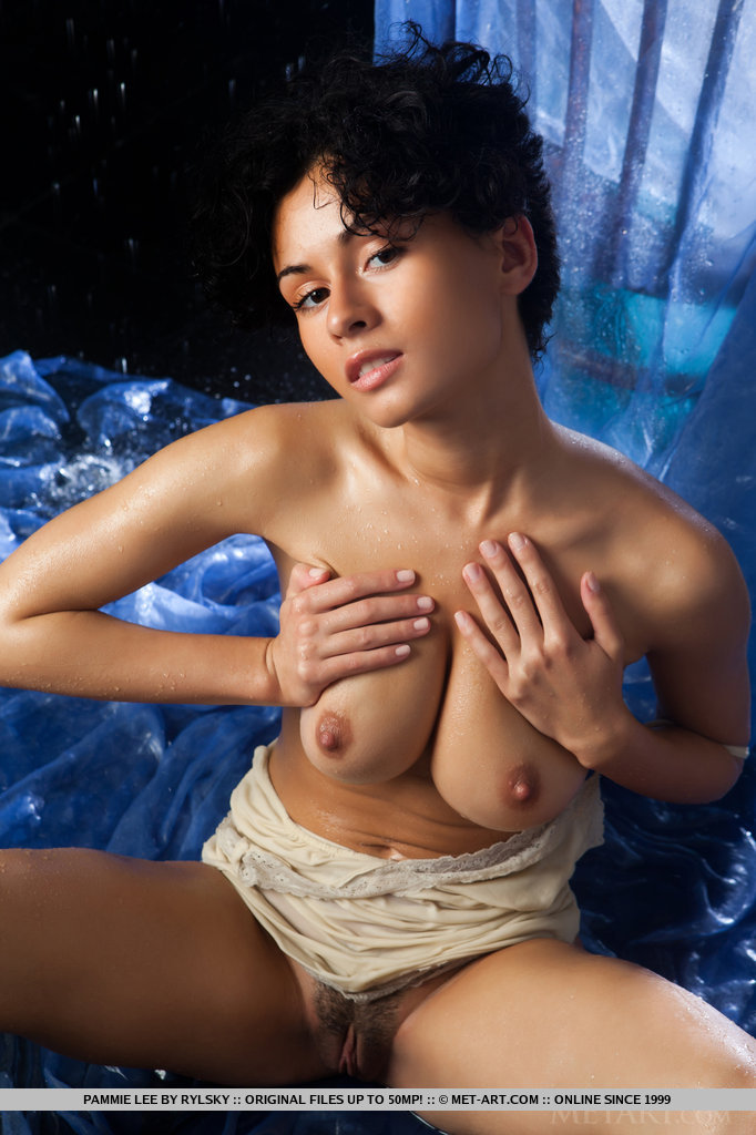 softcore asians nudes