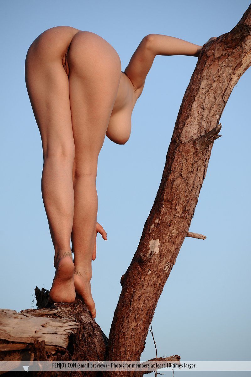 Assured, dark tree naked woman opinion