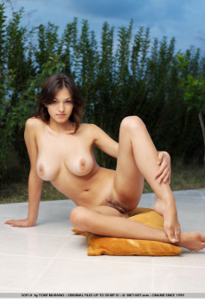 Hot Naked Woman In Mountain Forest