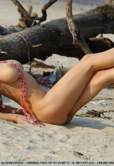 Hot Woman Naked On Beach Logs