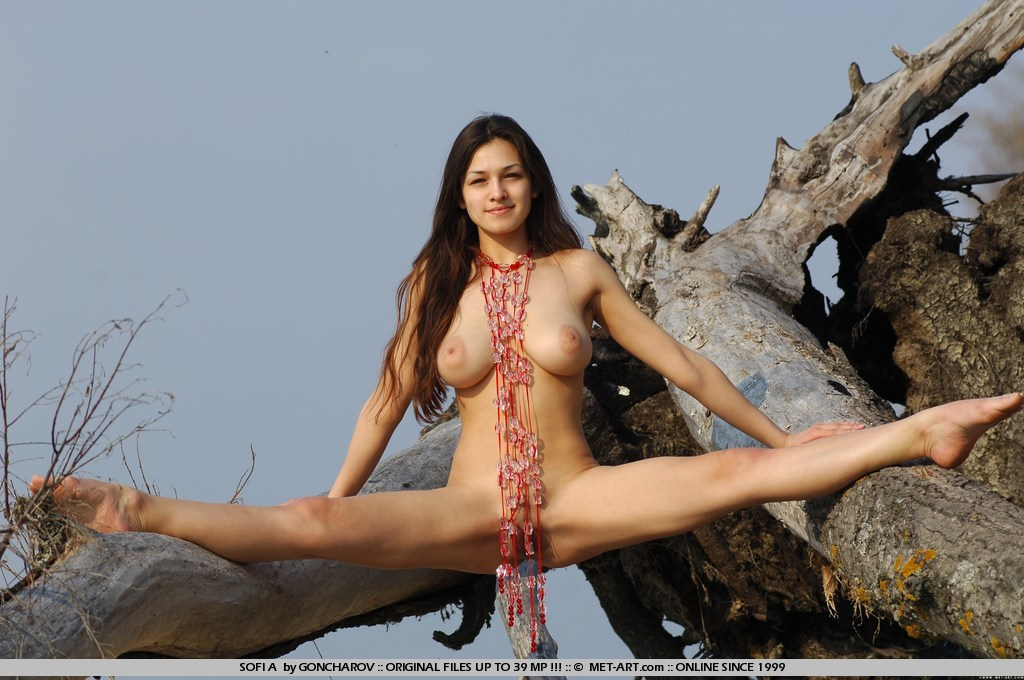 Intelligible Nude babes doing splits would