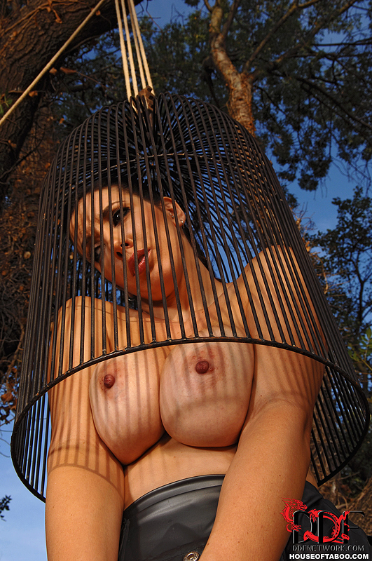 Naked Woman In A Bird Cage  Busty Girls Db-2595