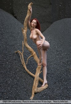 Naked Woman In Gravel Pit